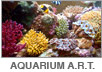 Reefscape Australia Aquarium Artificial Rock work and Themeing