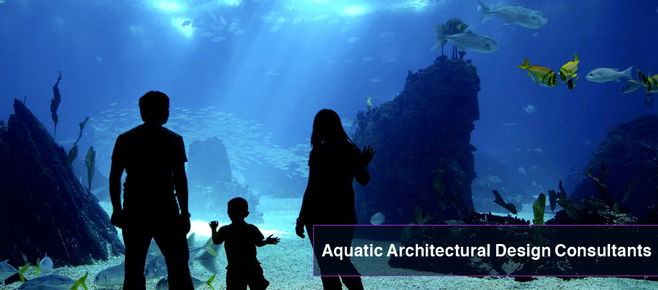 Picture of a large oceanarium acrylic window with a family looking into the aquarium behind.