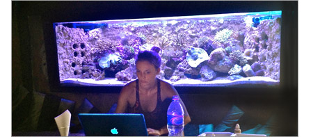 Woman test reef aquarium water parameters.